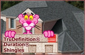 TruDefinition® Duration Shingles